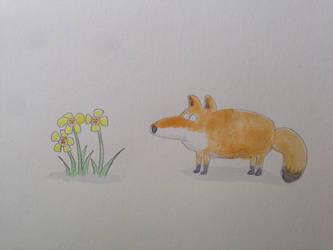 Fox by bodrington