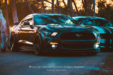 Ford Mustang HQ 4K