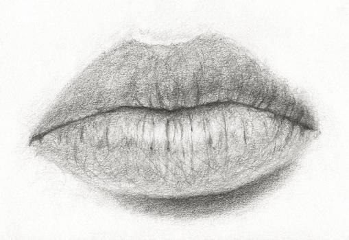 Lips - Pencil