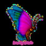 Pastel Butterfly LW