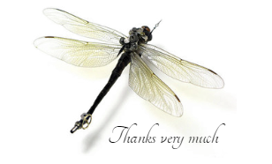 SP dragonfly