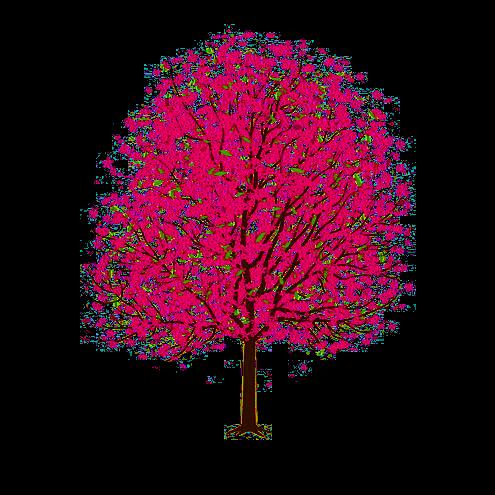 Beautiful Art Cherry Tree