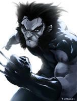 Wolverine by aerlixir