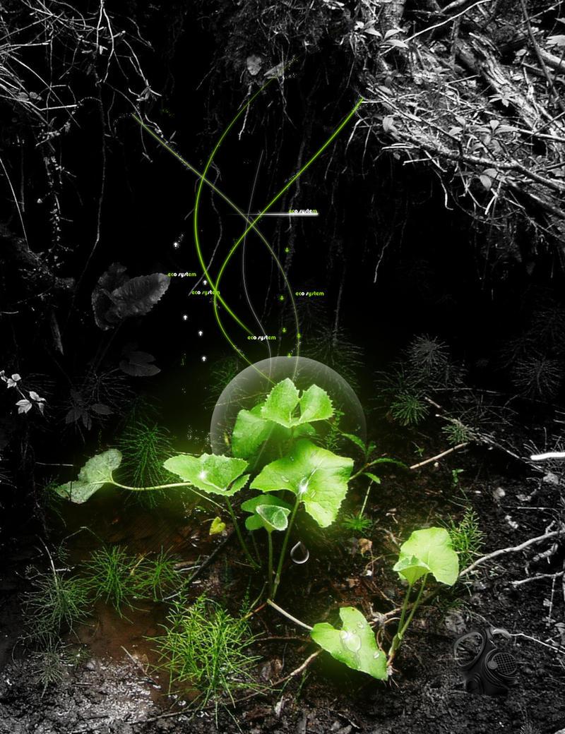 ecosystem by pullzar