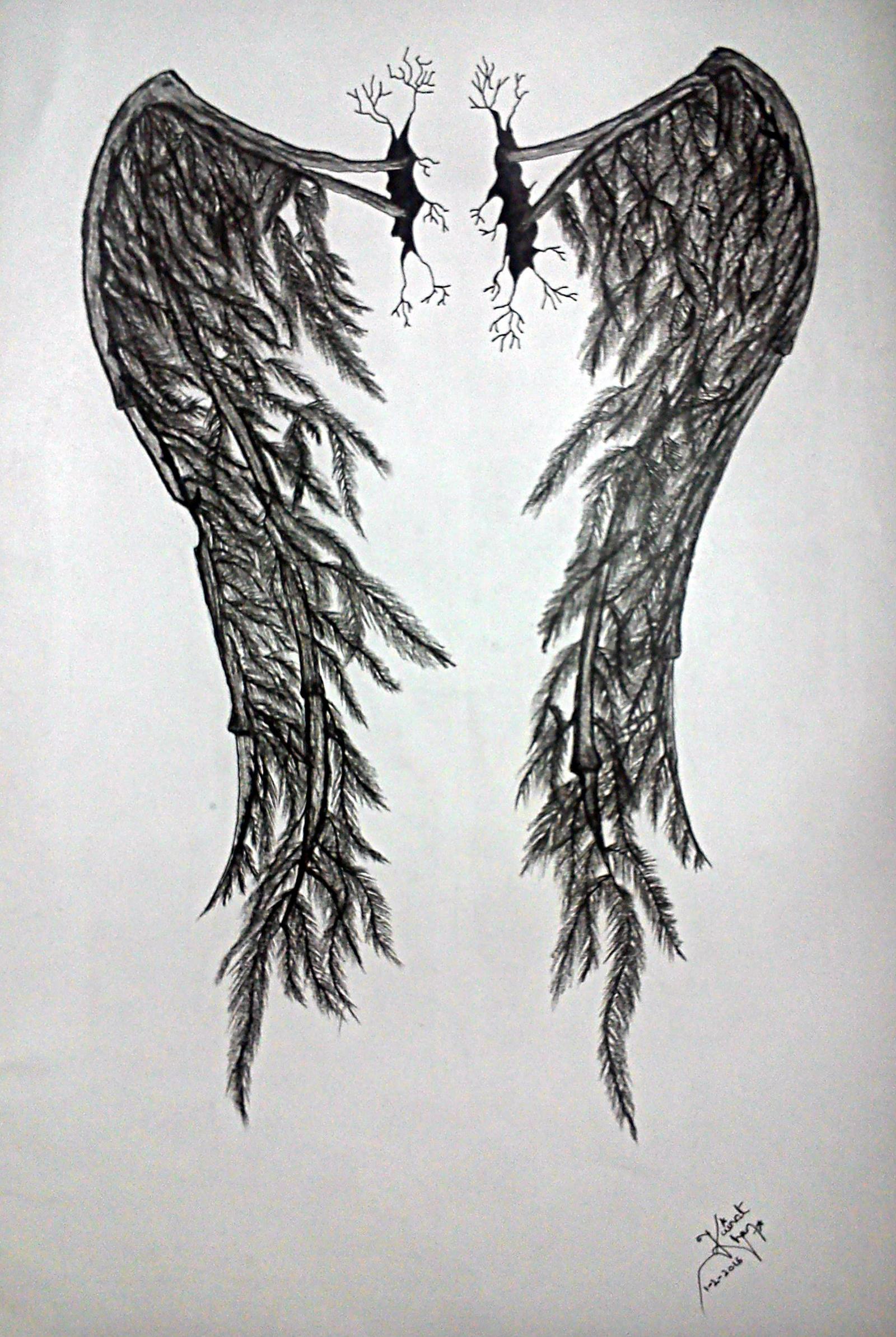 Wings of a Fallen Angel by Kainat-Azhar on DeviantArt