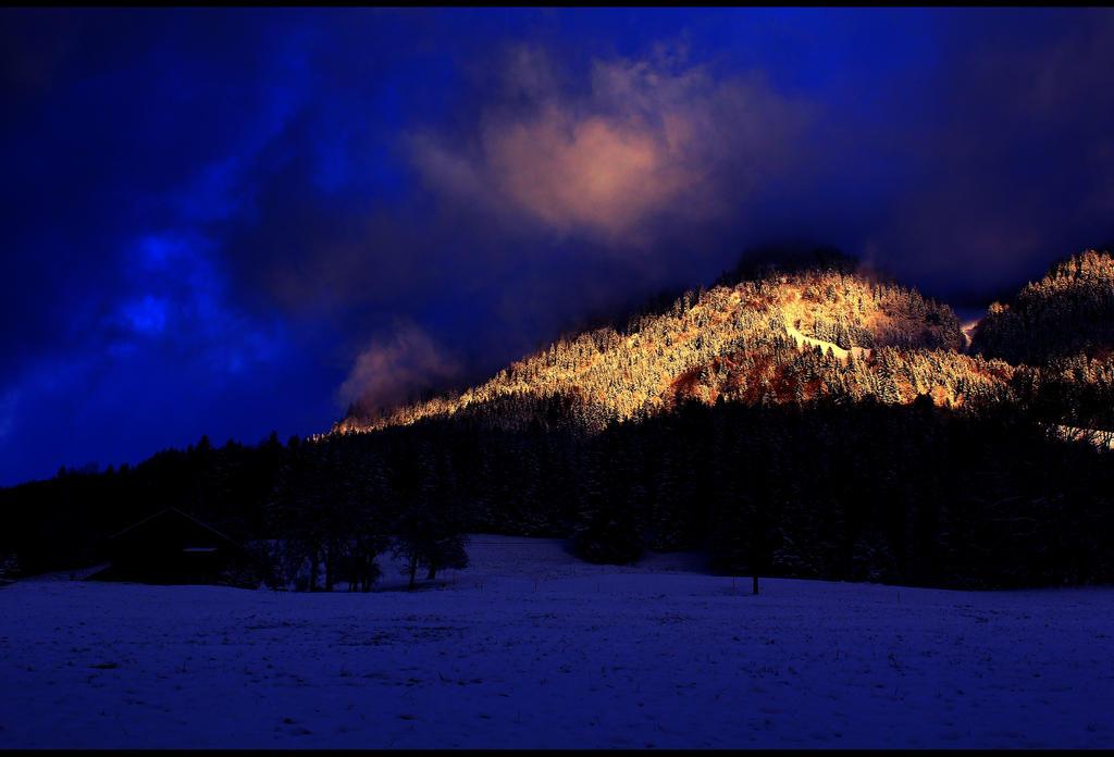 Dark winter by LeaBissiau