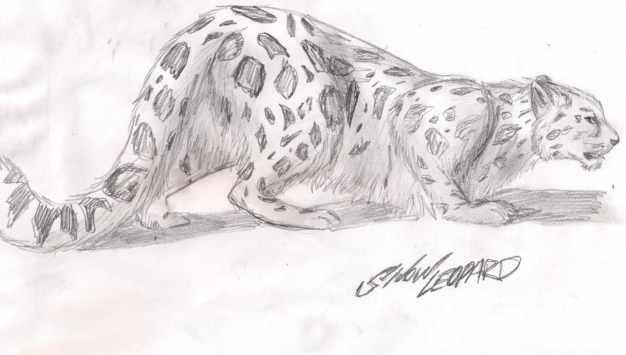 Cute Snow Leopard - Toon Figure - csp8212923