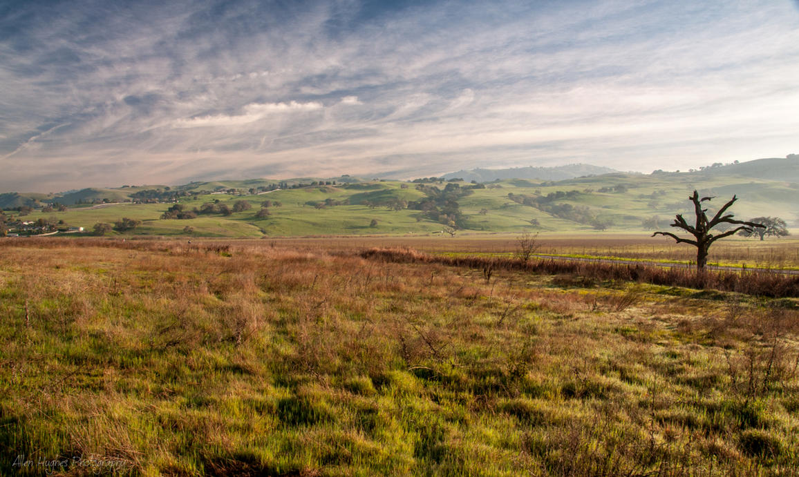 Morgan Hill 1a by Allen59