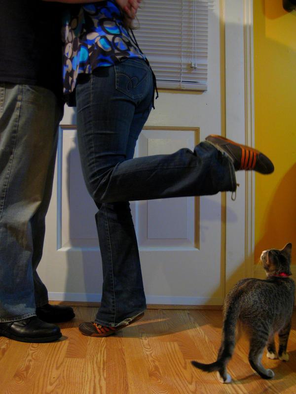 Cat Whispering In Dogs Ear