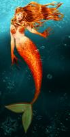 Mermaid Orihime