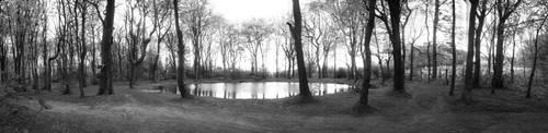 Pond by sclarke1986