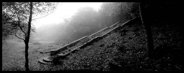 A set of Stairs in the Fog by sclarke1986