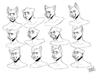 Expression Sheet commission