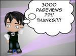 3000 Pageviews