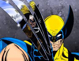 Wolverine vs Sabretooth by pascal-verhoef