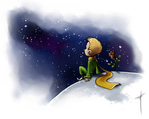 48 (The Little Prince)