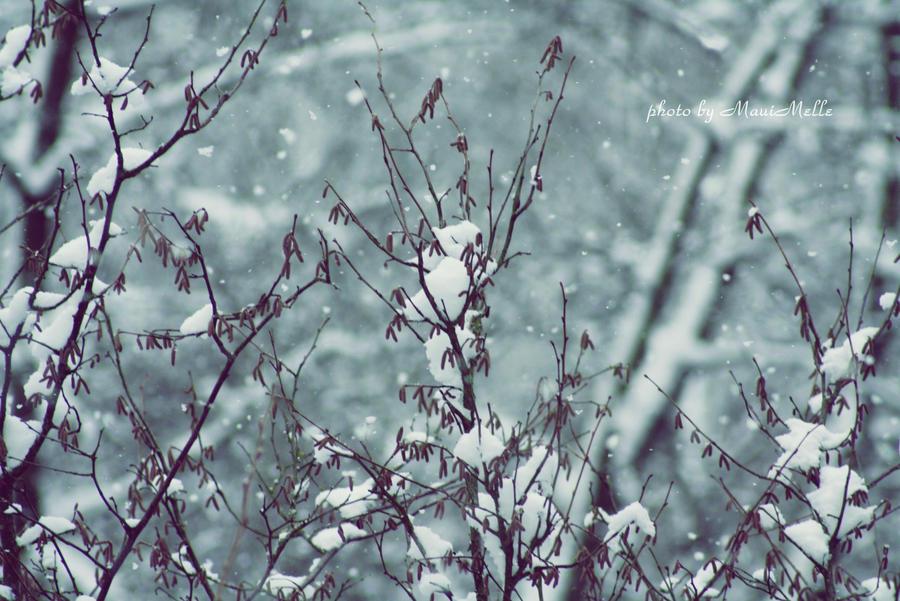 Let it snow. by MauiMelle