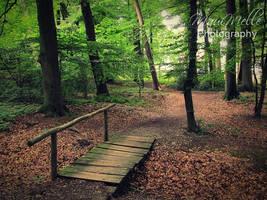.: Follow me :. by MelissaBalkenohl