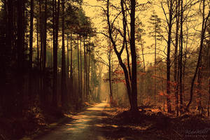 A way with the world~ by MelissaBalkenohl