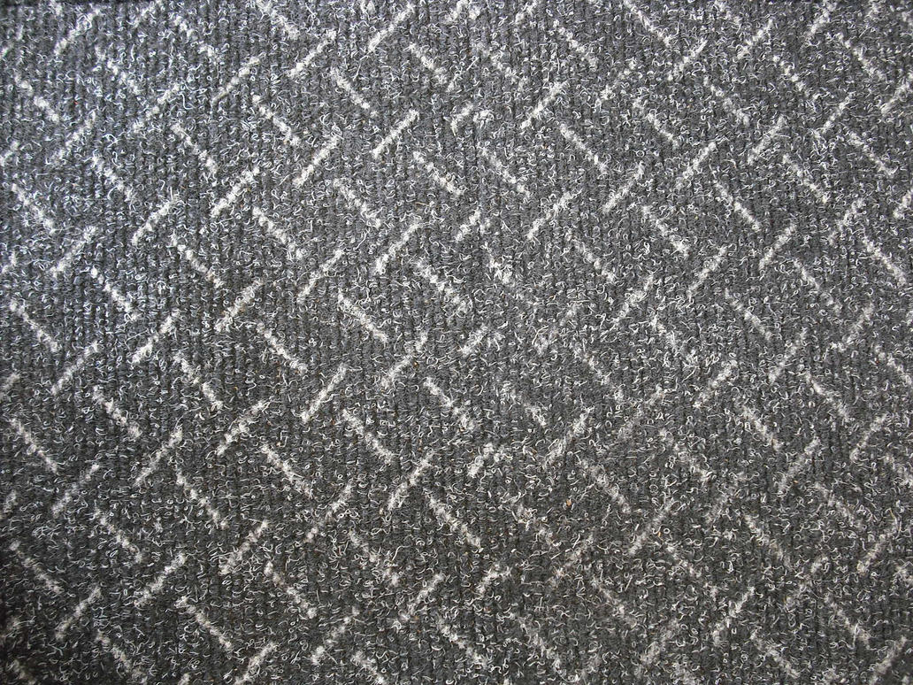 Carpet Texture by RanWal