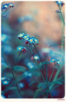 Vintage garden - 3 by anjali