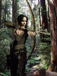 Katniss Everdeen manipulation
