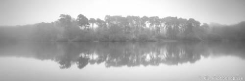 Misty morning by frogsjourney