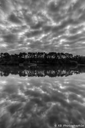 Reflection by frogsjourney