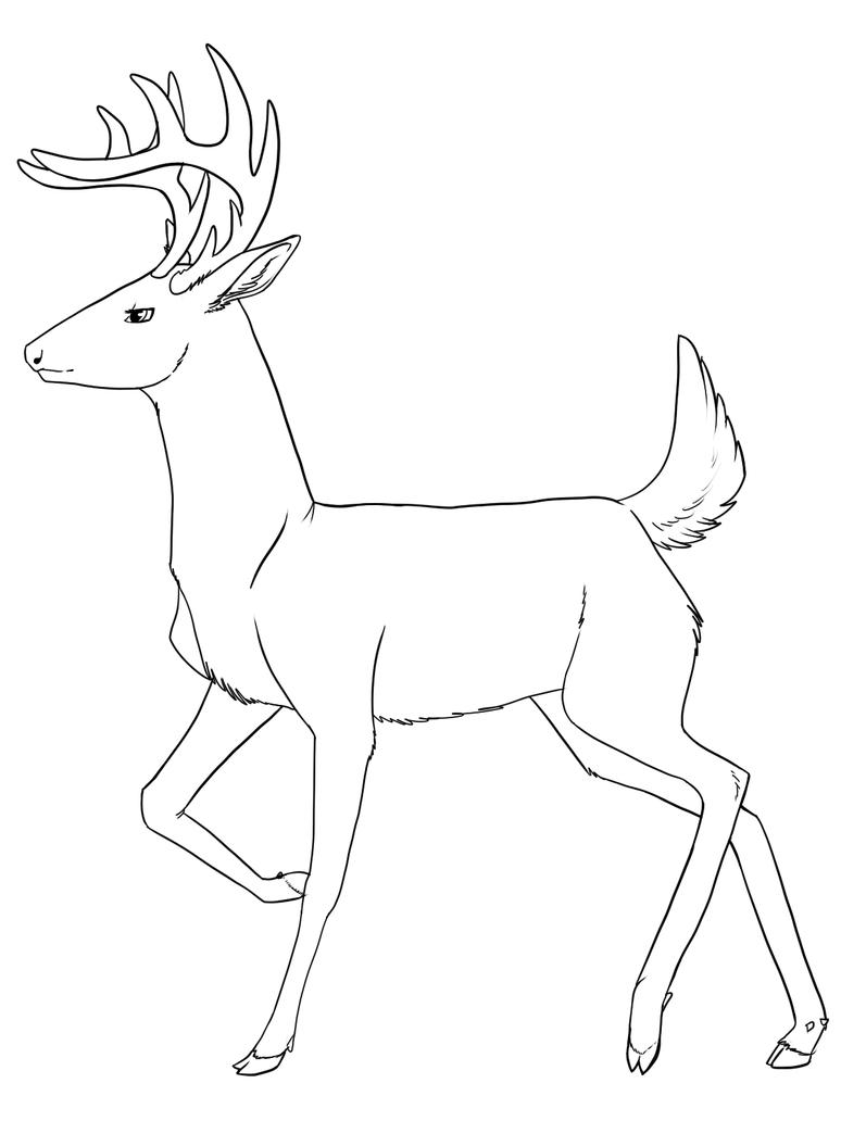 Line Drawing Deer : Male deer lines by the leeward voyage on deviantart