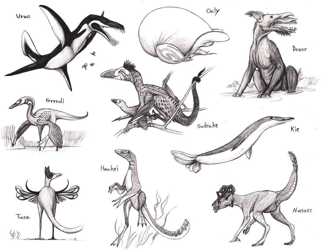 Sapient Animals
