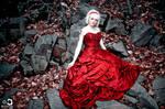 The Scarlet Dress - 3