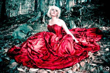 The Scarlet Dress - 6 by davidapuzzophoto