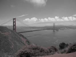 San Fran by Snakelady39