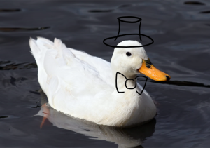 DuckInATopHat's Profile Picture