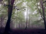 Stifling fog and hallucinations
