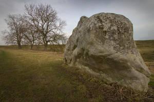 Standing stone at Avebury I by KarlDawson