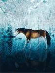 COMM: Frozen Mirror by Vhitany