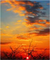 Sunset IV... by Erylum