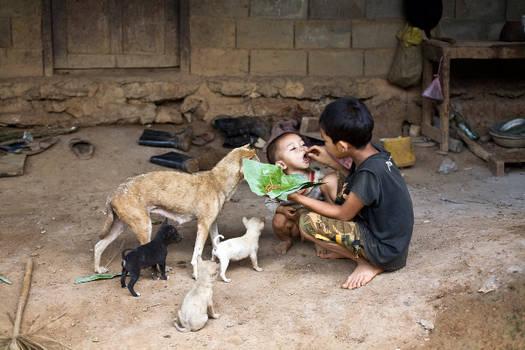 Laos Village Life III