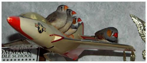 Birds of a feather by BlackTyrannomon