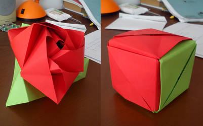 Origami Rose Cube by KibaPandaRo