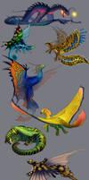 Unusual dragons