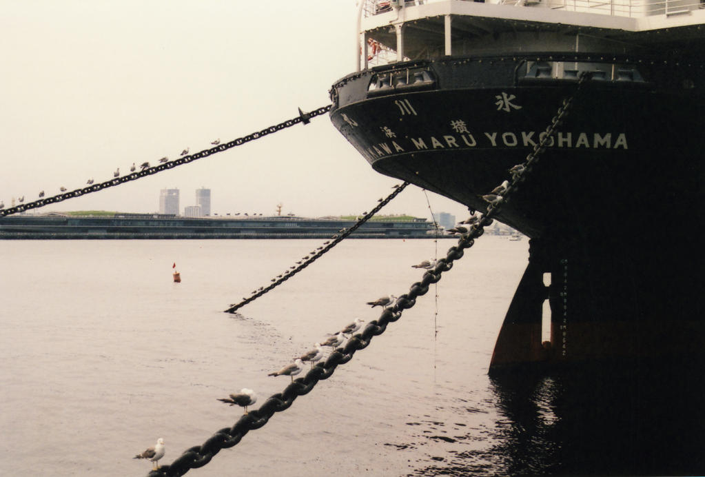 Yokohama by Noniway