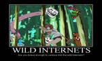 Wild Internets