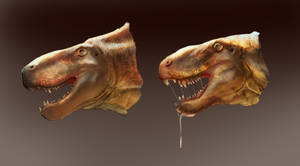 Dimetrodon head sketches