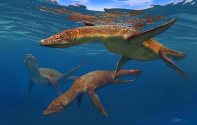 Marine Reptiles: Rhomaleosaurus V2