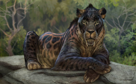 Chilled Out Cat - Smilodon populator