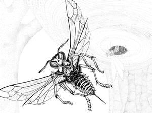 Blink Wasp