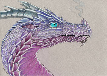 Purple Dragon by AnnaRDunster