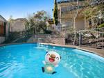 Oshawott playing in the pool!